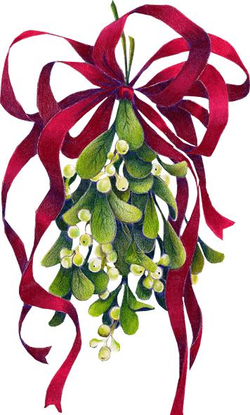 gui noel le gui | *Christmas Greetings / Cards, Vintage* | Pinterest  gui noel