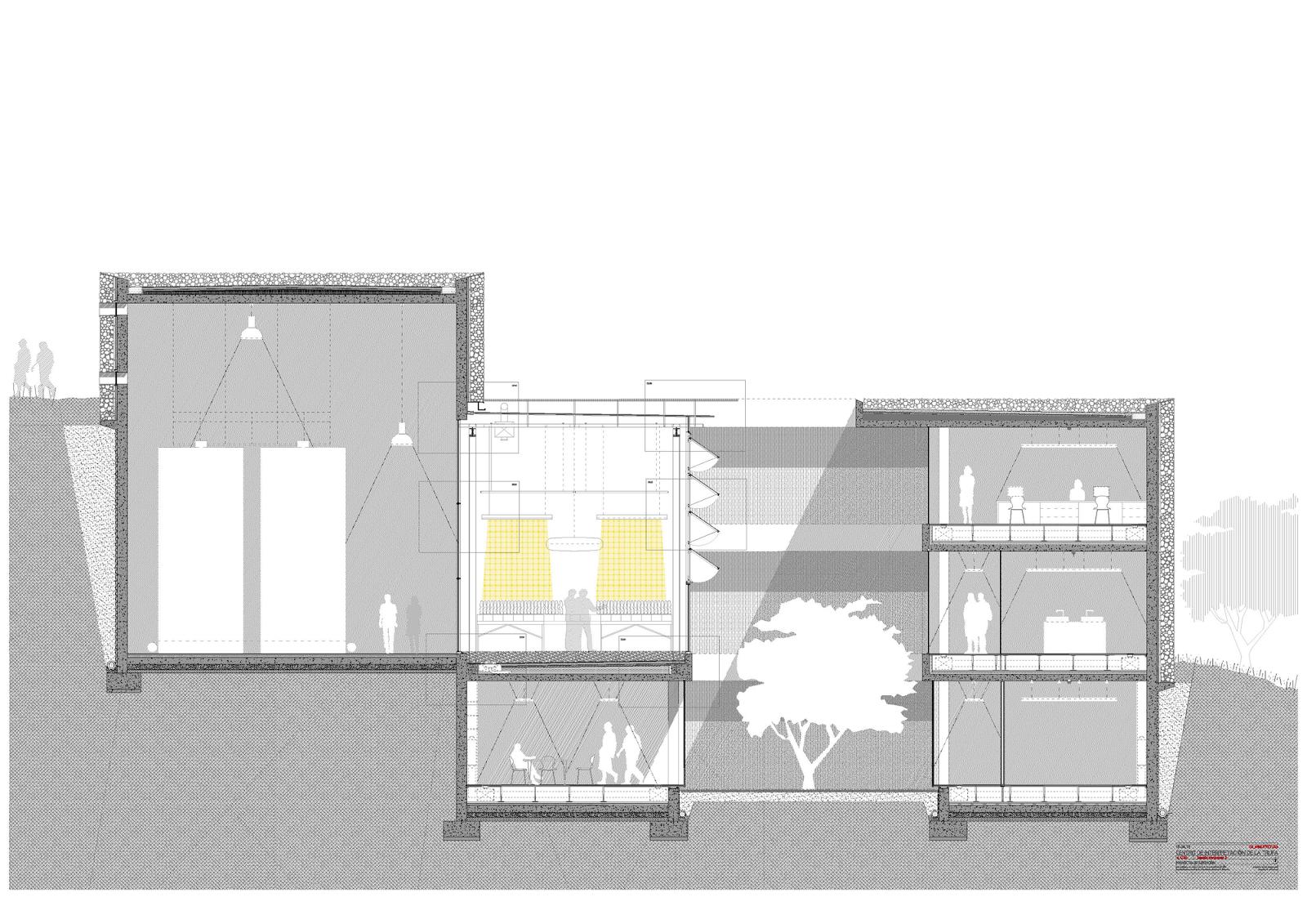 Architecture Section Cut Elena Mira Lillo Truffle S Center Of