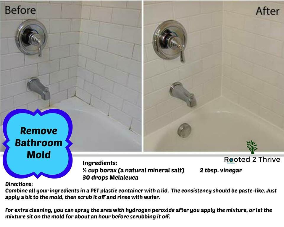 Natural Bathroom Mold Remover With Melaleuca Essential Oil