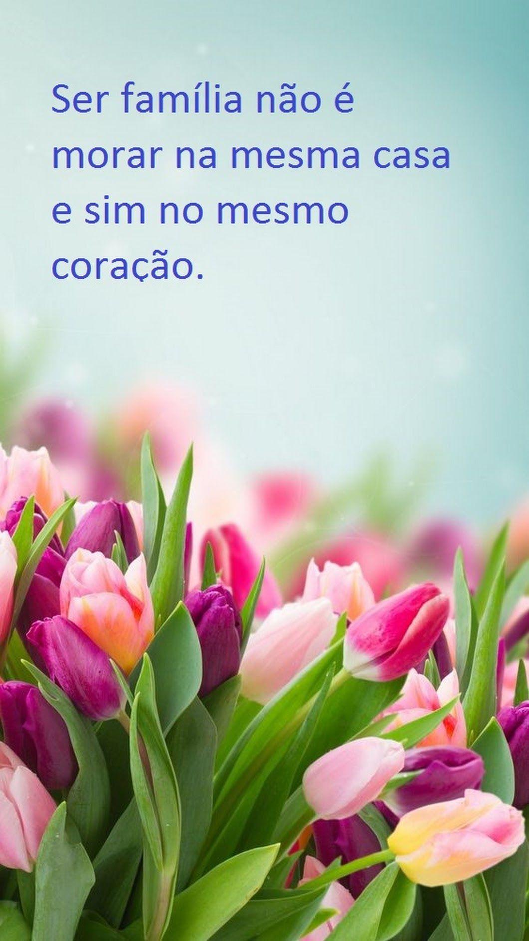 Ha Amigos Mais Chegados Que Um Irmao Primavera Flor