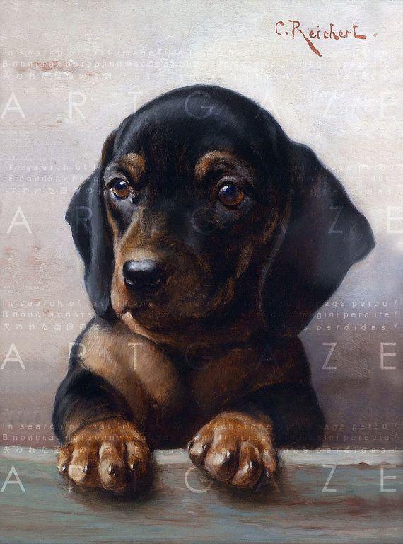 Adorable Dachshund Puppy Doxie Dog Vintage Illustration Vintage