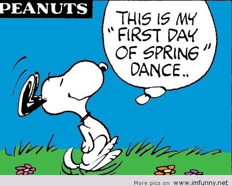 Funny Pictures Funny Quotes Photos Quotes Images Pics Snoopy Ilustraciones Frases Diarias