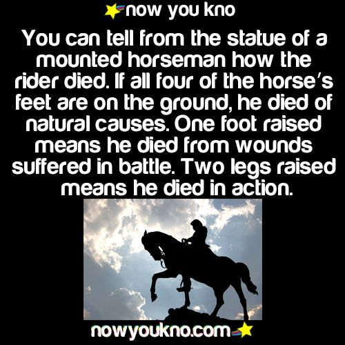 HOW DID THEY DIE? THIS WILL TELL YOU HOW A MOUNTED PERSON IN HISTORY DIED
