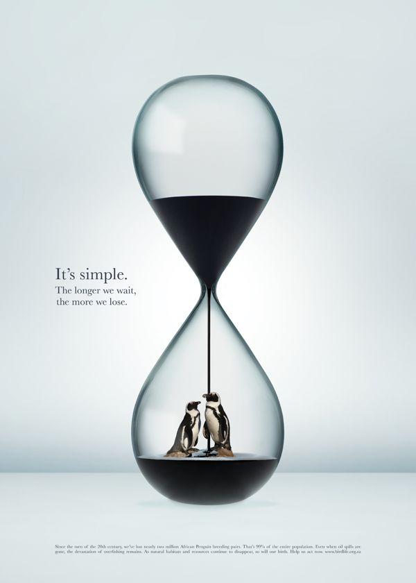 birdlife hourglass printposter campaign on behance