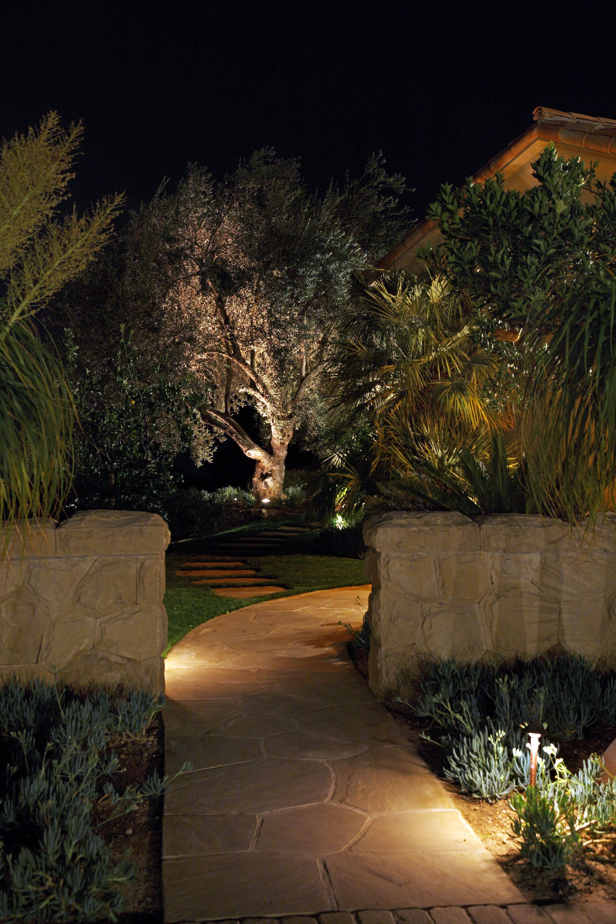 Vacation Home Landscape Lighting Modern Landscape Lighting