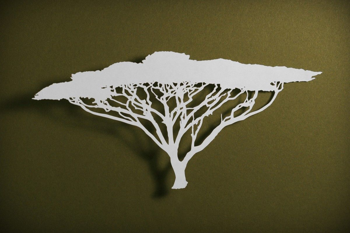 Umbrella Thorn Acacia Tree Adoption Umbrella Tree Tree Wall Art