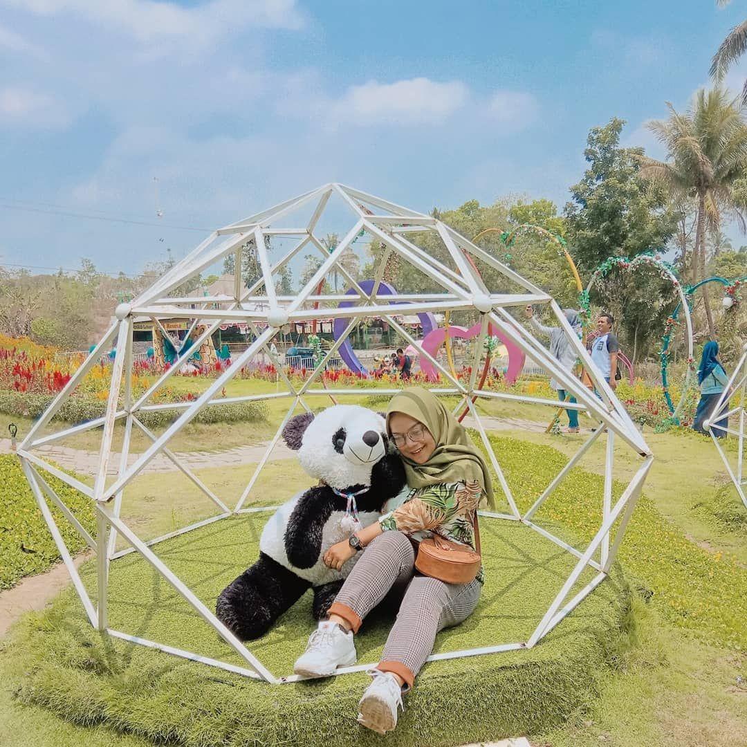 Spot Foto Di Alamanda Jogja Flower Garden Image From Desthia Ayu Di 2020 Kota Taman Tempat