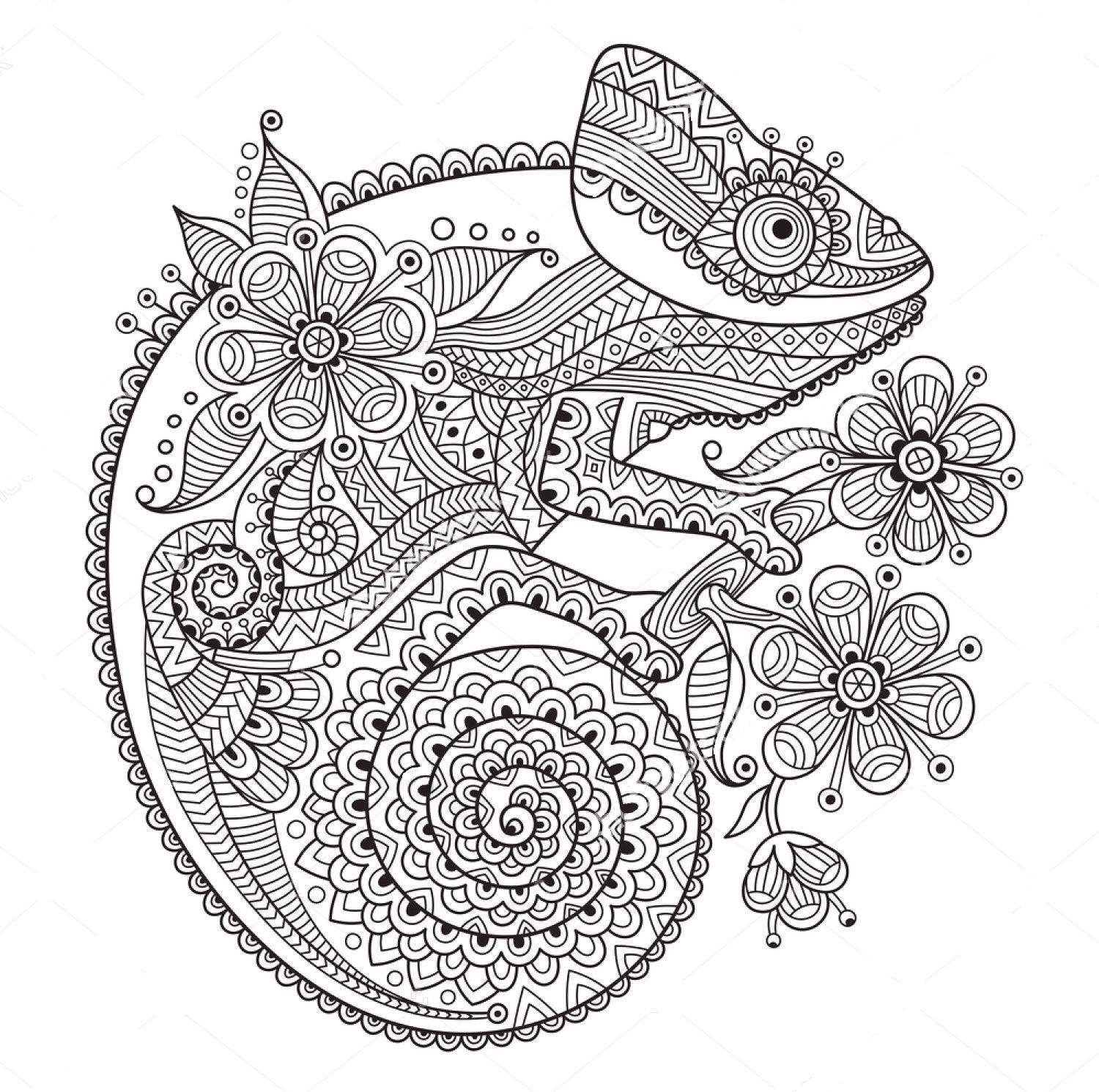 Chameleon zentangle coloring page   Pattern coloring pages ...