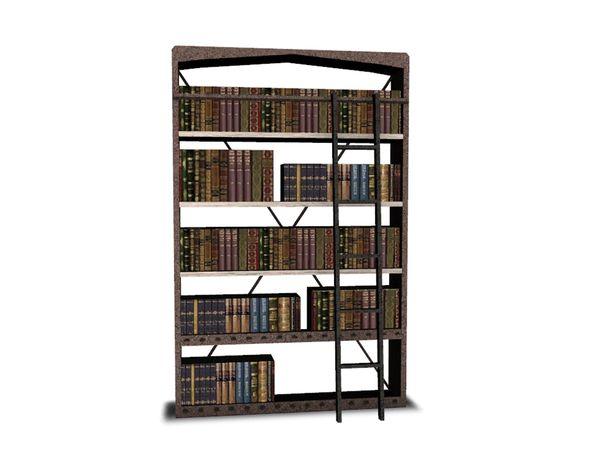 Angelas Pure Living Bookshelf