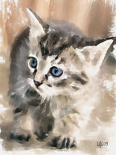 What Is There Watercolor Cat Cat Art Watercolor Art