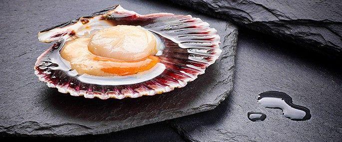 CARNE DE ZAMBURIÑA & ZAMBURIÑA MEDIA CONCHA - Les ofrecemos esta vieira en bolsas de 1 kg sin concha, solo la carme con su coral. Está congelada pero su sabor se mantiene intacto. Para hacer al horno o en empanada le resultará exquisita. La cantidad por kilo es de unas 20-25 piezas