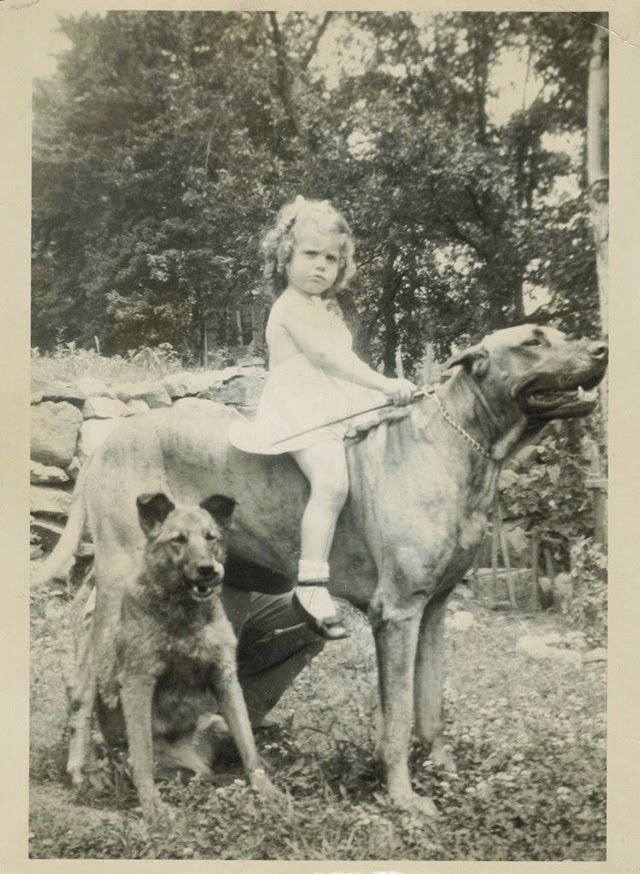 Vintage photo, girl riding large dog while another sits beside.