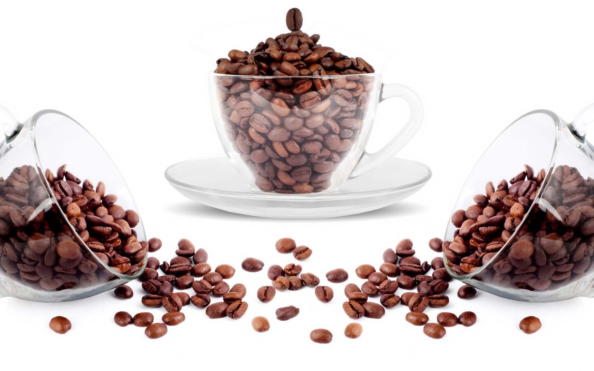 القهوة مشروب يعد من بذور البن المحمصة وينمو في أكثر من 70 بلدا ويقال أن البن الأخضر هو ثاني أكثر السلع تداول Gourmet Coffee Beans Coffee Beans Organic Coffee