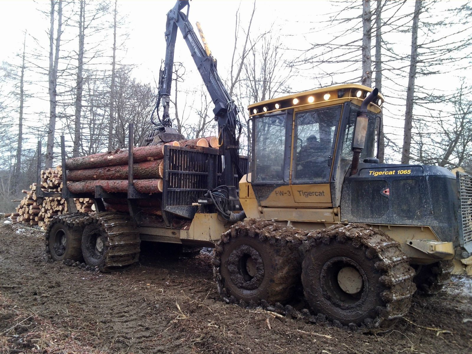 Tigercat Forestry Equipment       industrial agriculture forestry