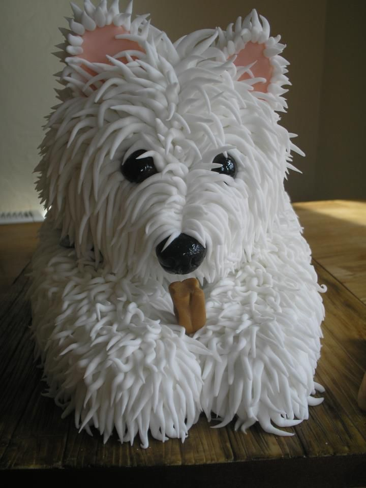 Dog Biscuit Shaped Cake Pan