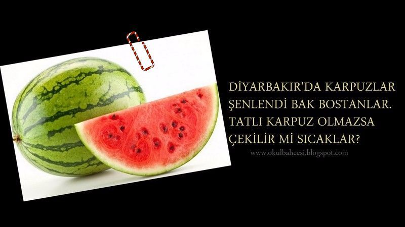 #TutumYatırım ve #TürkMallarıHaftası #meyveler #tekerlemeler #belirligünvehaftalar