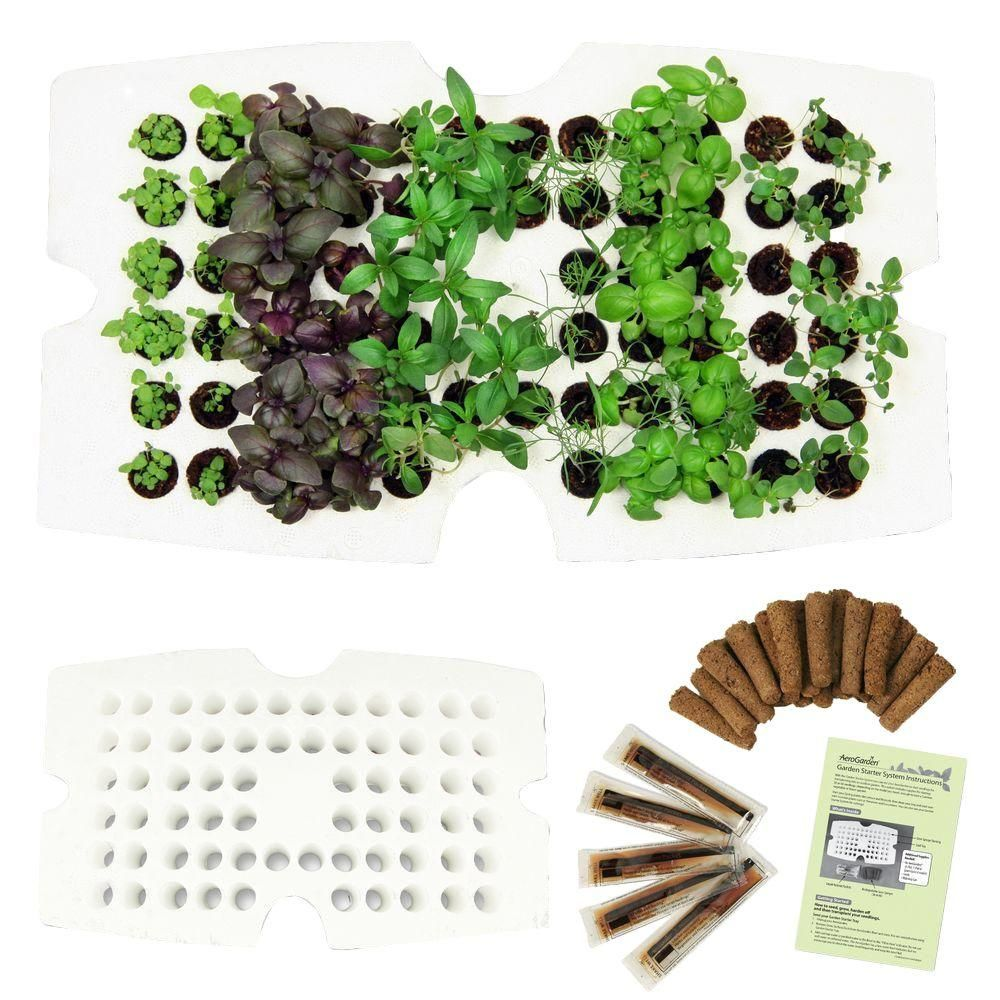 Whether They Have A Full Garden Or A Tiny Balcony A Seed Starter