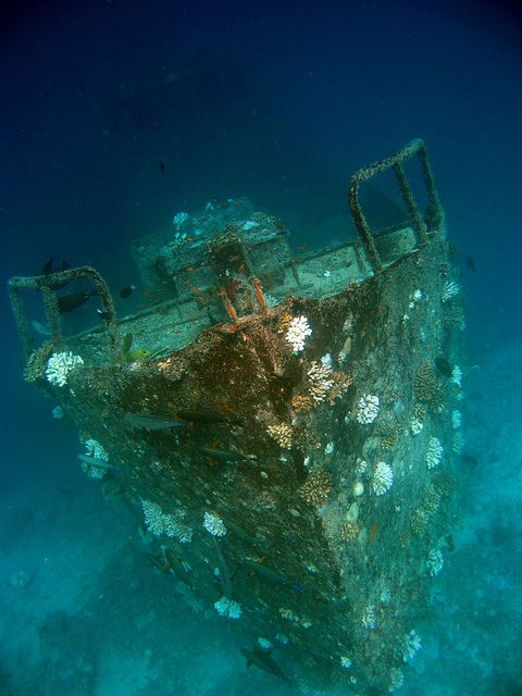 Sunken Ship Maldives | It's a NAUTICAL life for me in 2019