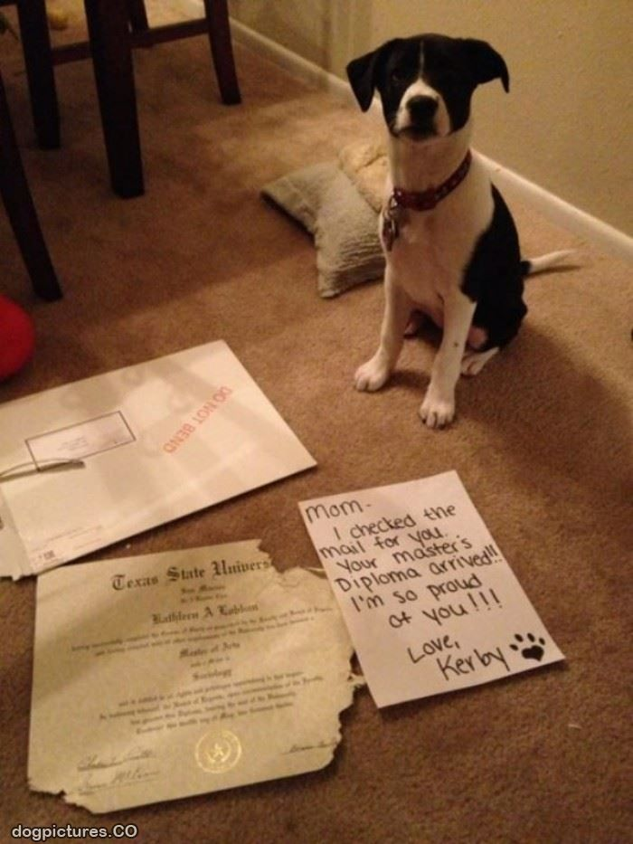 Congrats from the pup!