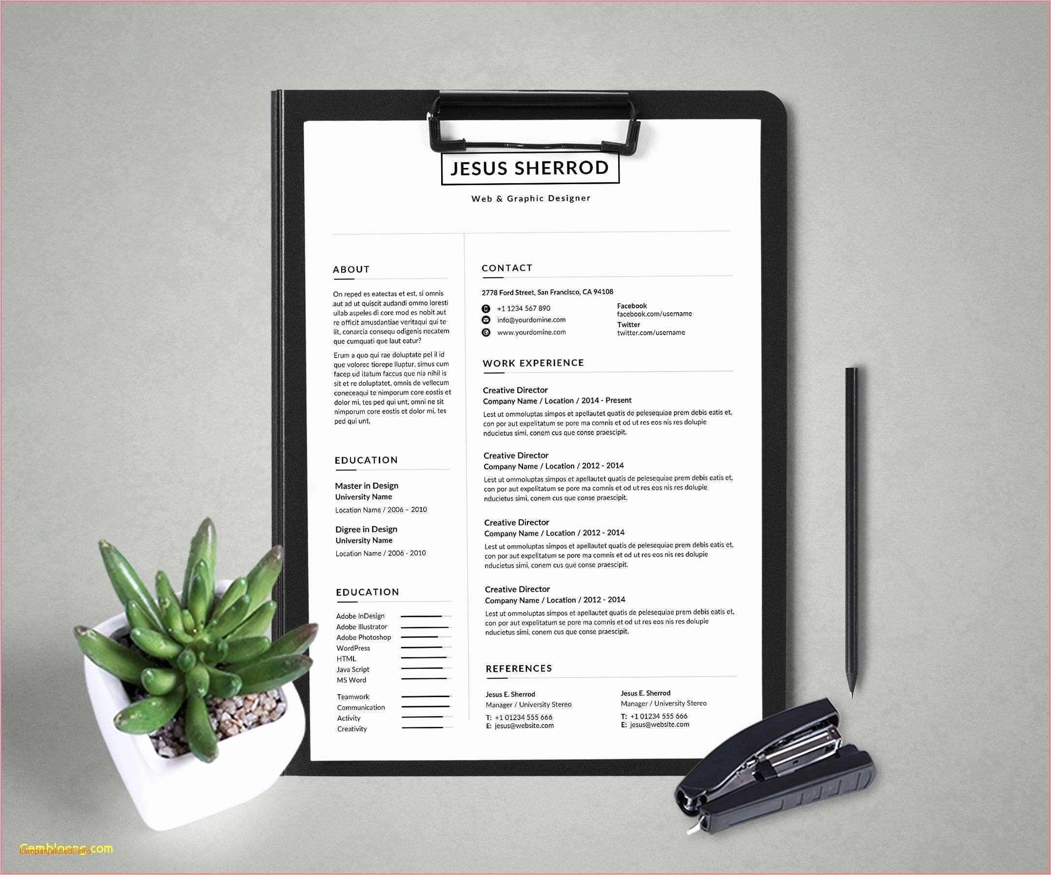 Elon musk resume template new elon musk resume template
