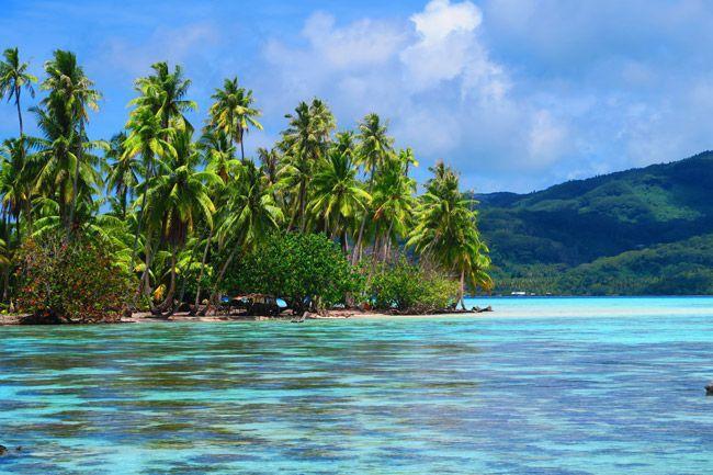 Taha'a, Society Islands-French Polynesia. (2017)