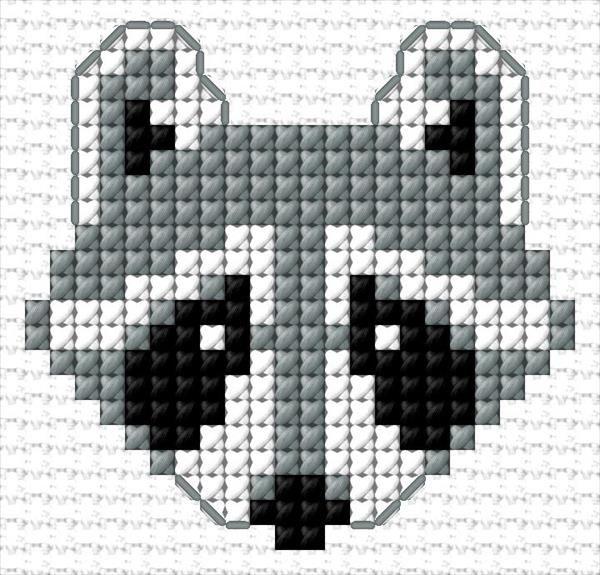 Photo of Raccoon 37 4127