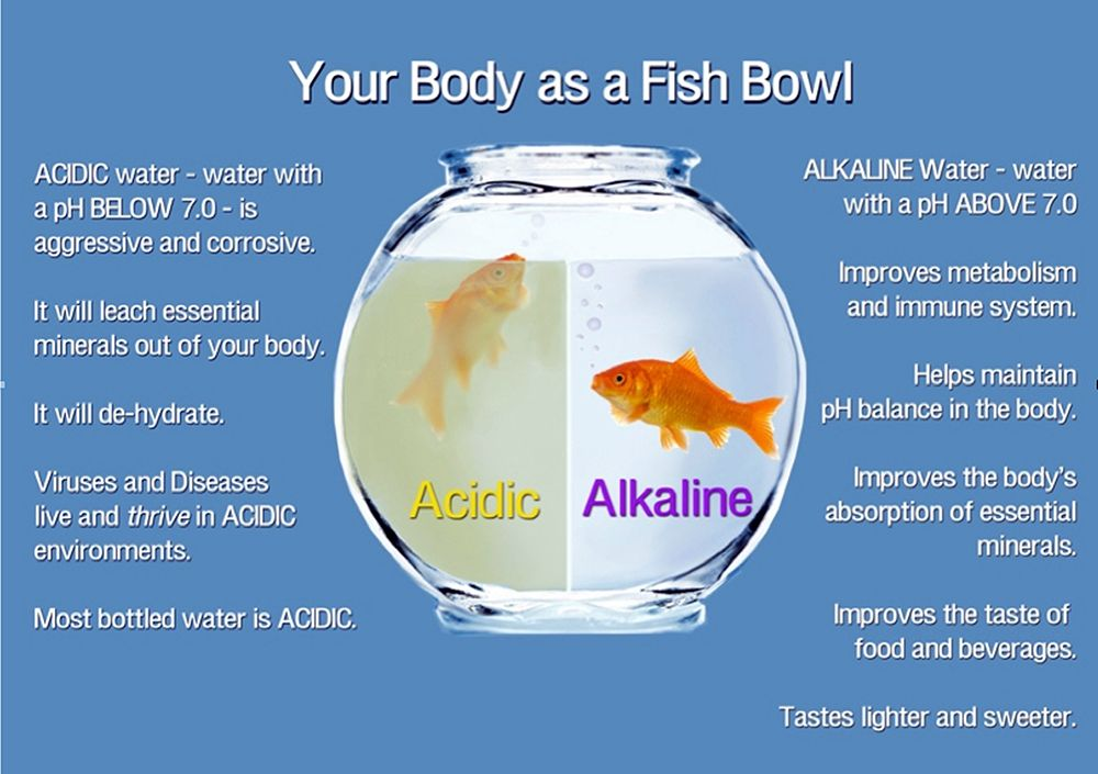 the ph scale measures Google Search Drinking alkaline