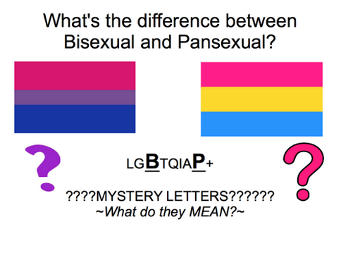 Difference between pansexual and bisexual