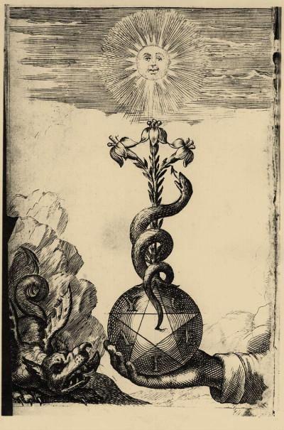 Le barbier médecin ou les Fleurs d'Hippocrate dans lequel la chirurgie a repris la queue du serpent Jean Michault 1672