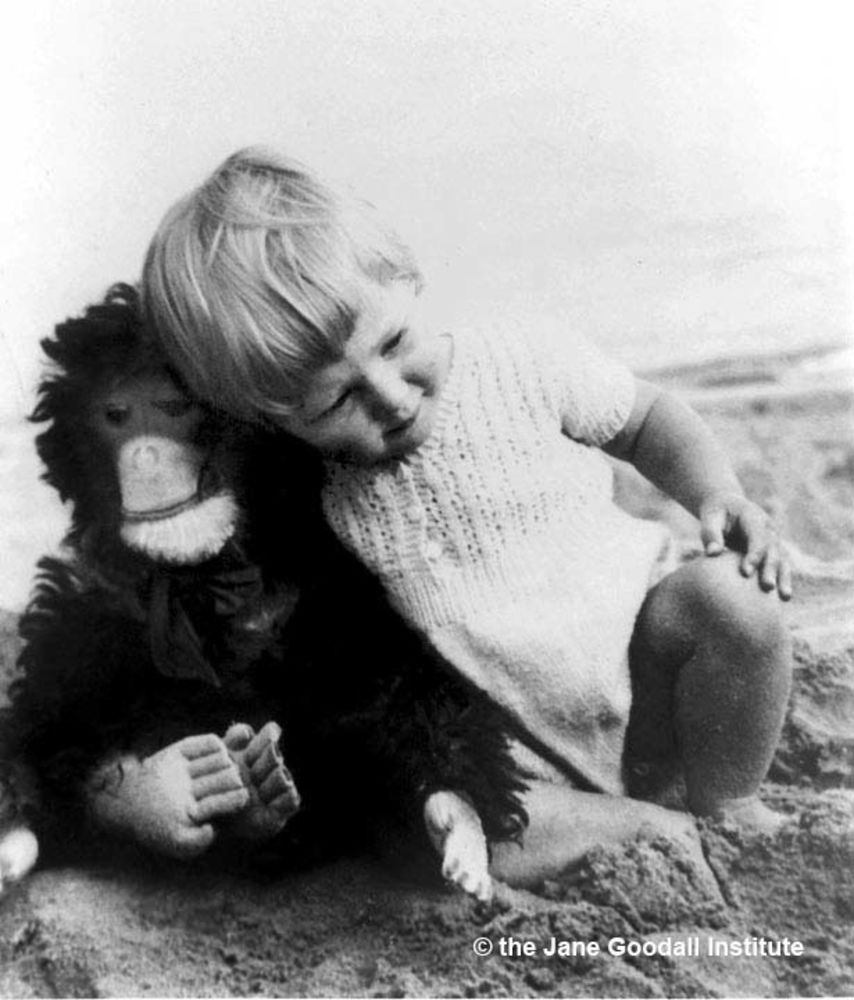baby photo of Dr. Jane Goodall with her stuffed toy chimpanzee, Jubilee, a gift from her father.