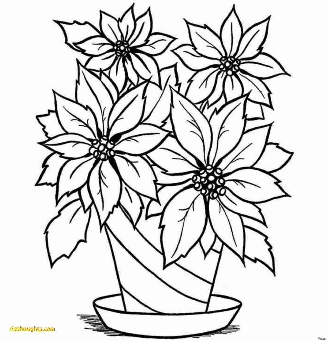 Plant Coloring Pages Youtube Pics