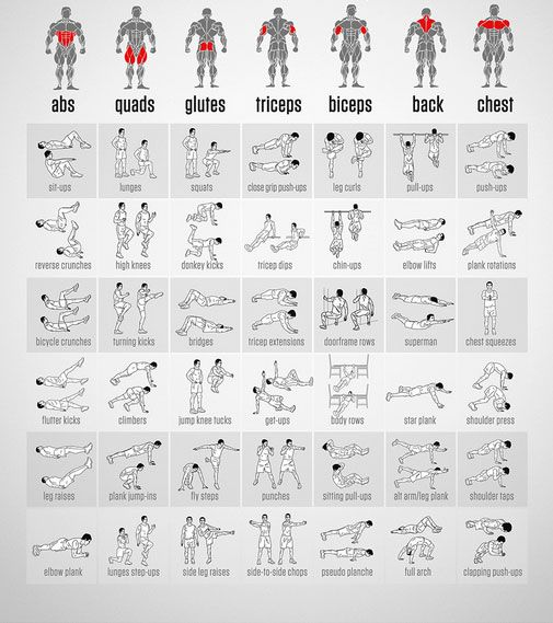 best full body workout routine chart with illustrations