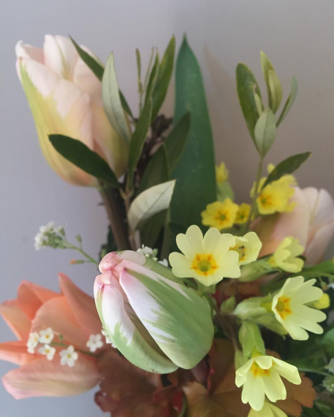 A posy of home grown flowers for the most important birthday this a posy of home grown flowers for the most important birthday this week for beautiful margot gray melia born on monday and who i got to meet yesterday izmirmasajfo