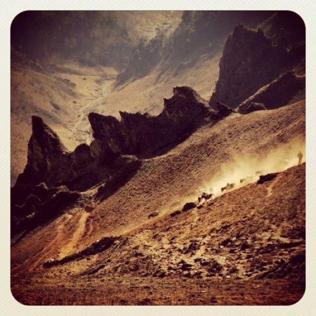 Pack mules descending at Chuchemara Lagana Pass(3800 m above sea level) , Jumla Nepal. Source: facebook.com/myholidaynepal