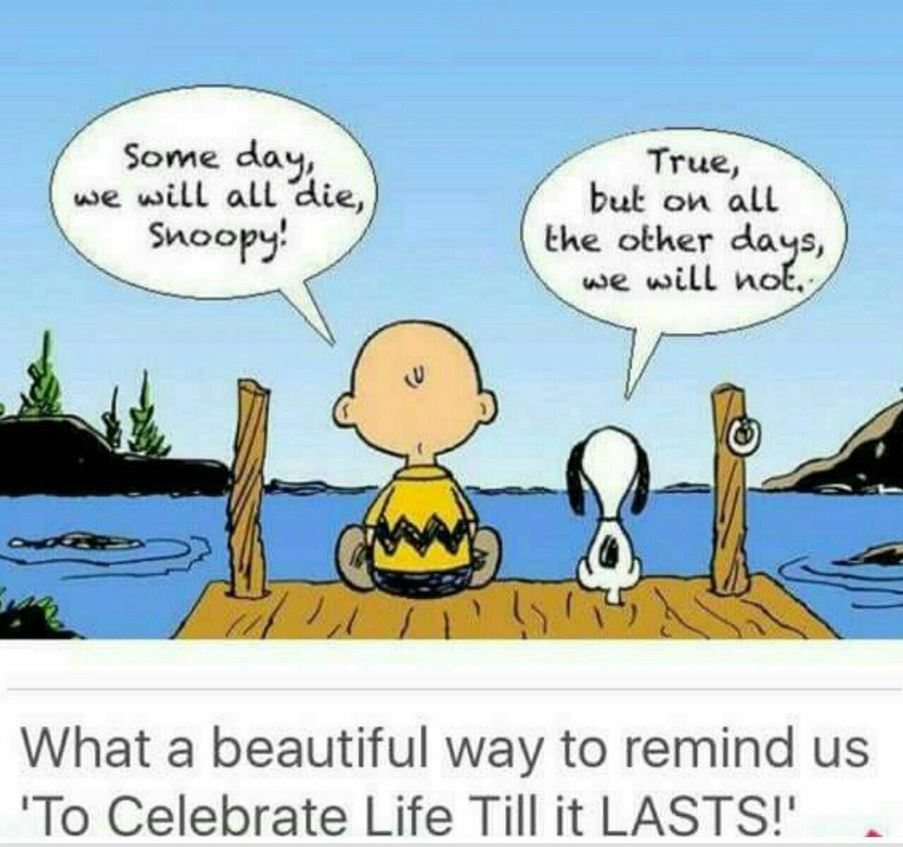 Charlie Brown Quotes About Life: Pin By SIDHARTHA PATNAIK On BEAUTIFUL THOUGHTS
