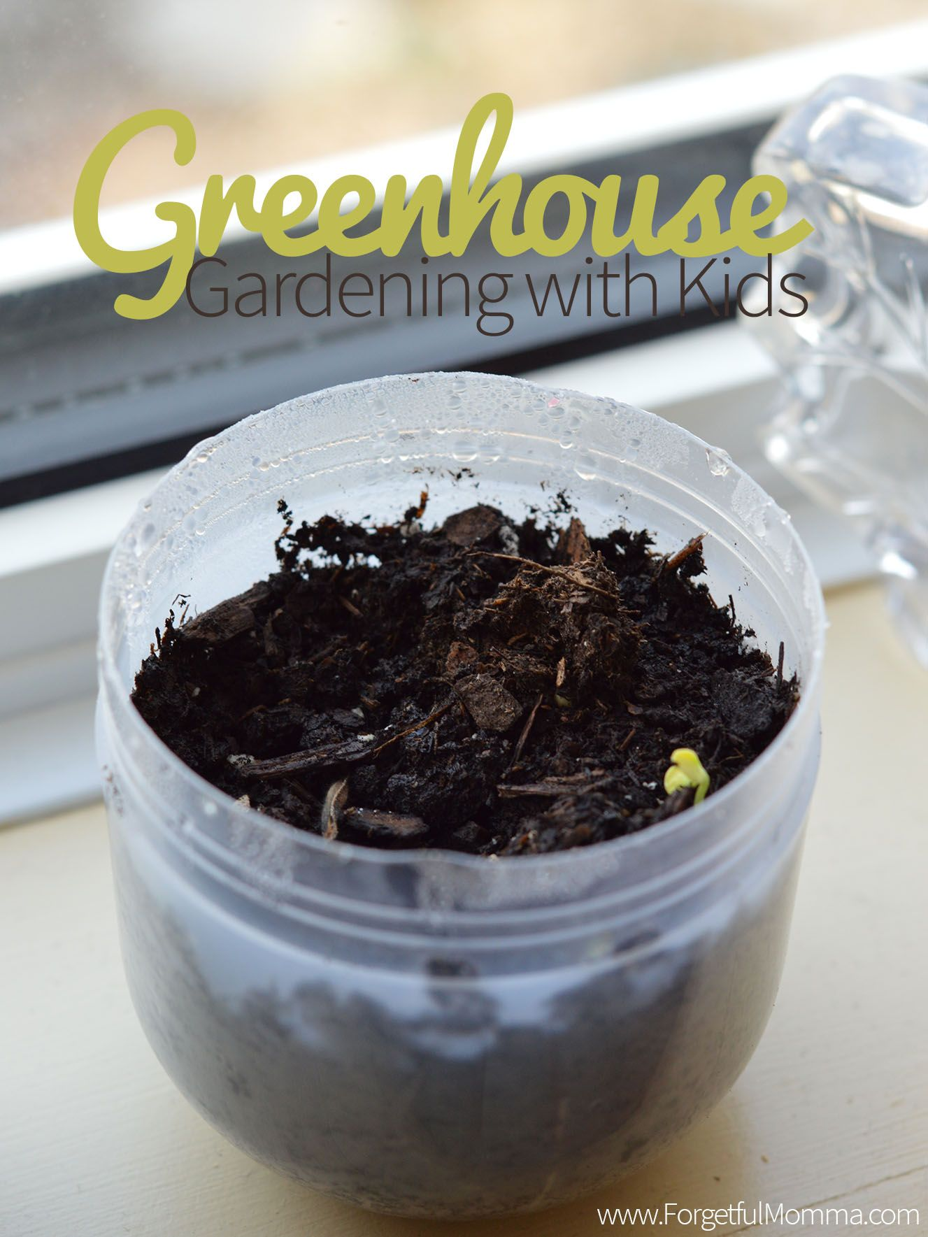 Mini Greenhouse Gardening With Kids | Tag Der Erde, Minis Und Kind Garten Kinder Kindermoebel Spielecken Diy