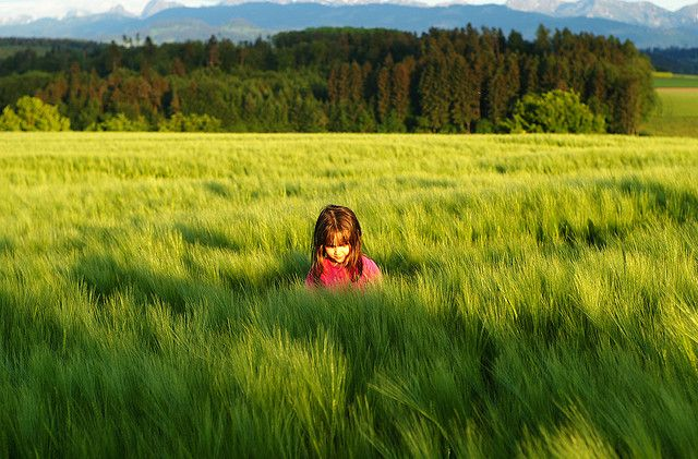 Girl in a field of grass I by Bill Liao, via Flickr