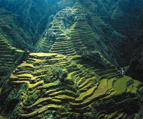 The Banaue Rice terraces,Philippines, a major tourist attraction, are 2000-year old terraces that were carved into the mountains of Ifugao by ancestors of the Batad native's. They were carved as an attempt to provide level steps where the indigenous people could grow rice. Fully built with hand without the help of machines, the terraces are often regarded as one of the greatest engineering achievements of mankind. They have been described as the eighth wonder of the world.