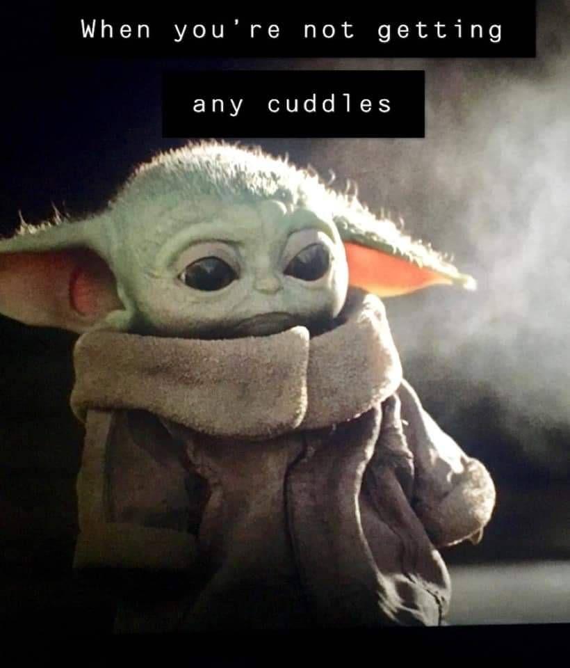 Awwwww Found On Fb Yoda Funny Yoda Meme Funny Meme Pictures