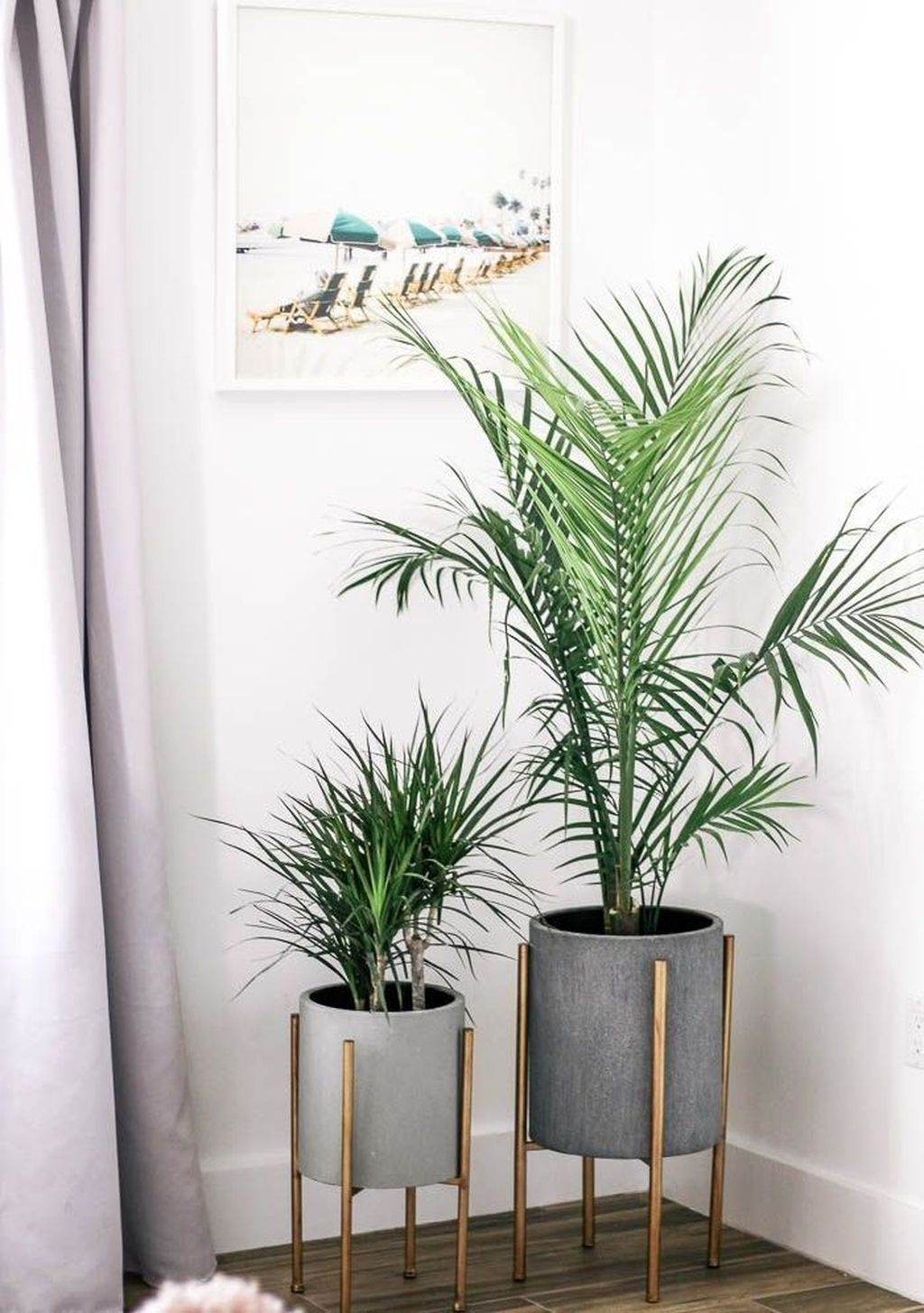 35 Lovely Apartment Living Room Decorating Ideas On A Budget Living Room Plants Living Decor House Plants Decor