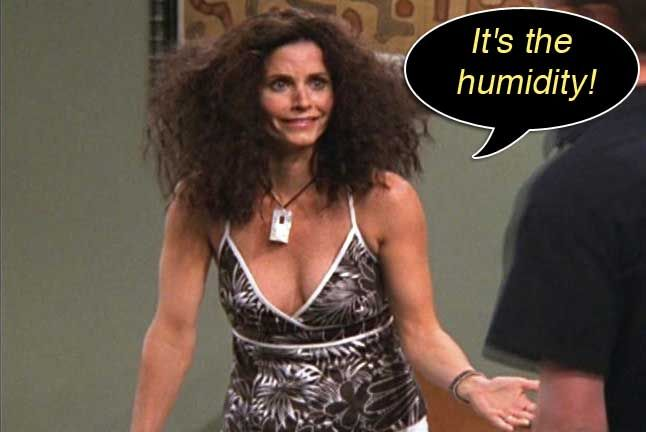 Image result for monica humidity hair