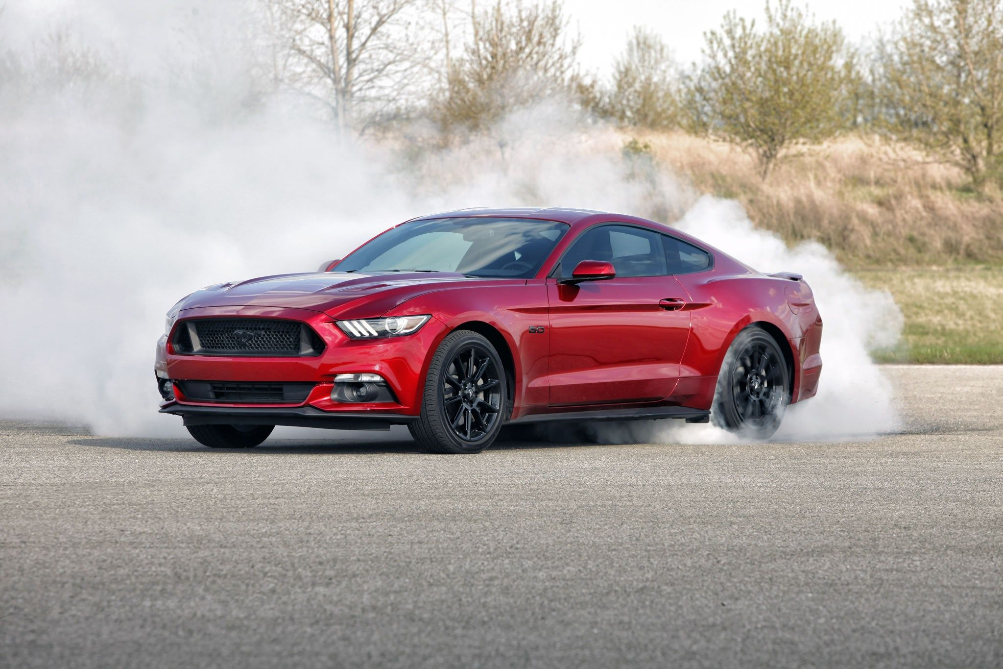 Mustang Free Screensaver Wallpapers Affordable Sports Cars Ford Mustang Mustang Gt