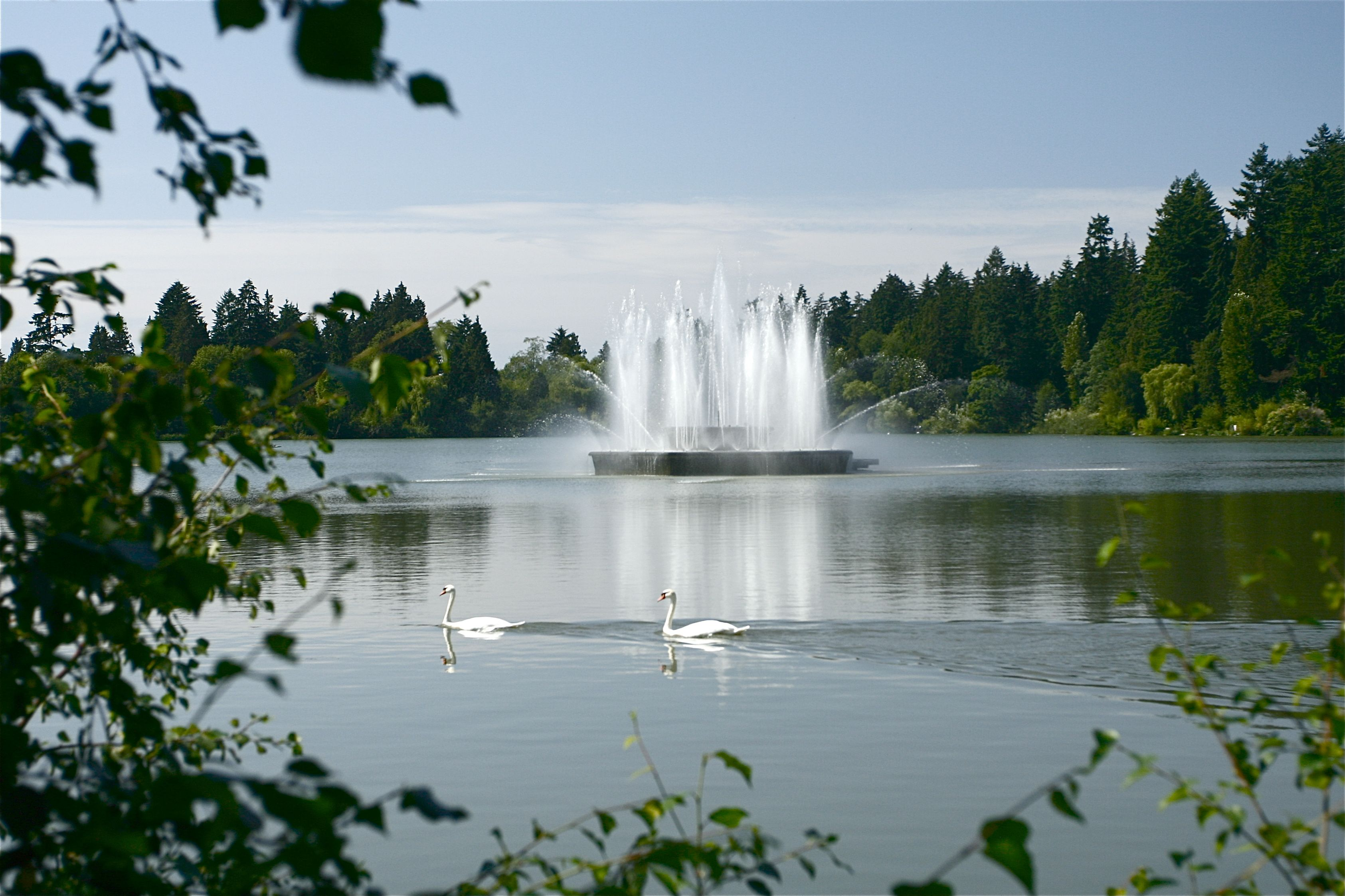 Jubilee Fountain In Lost Lagoon Stanley Park Vancouver