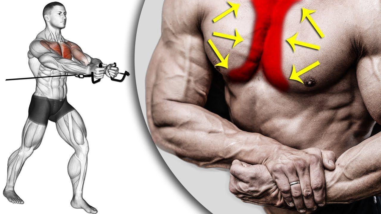 New Video By مهووس عضلات كمال الاجسام On Youtube للصدر افضل تمرين للصدر في المنزل بدون اوزان تمارين الص Body Anatomy Health Fitness Nutrition Beautiful Eyes