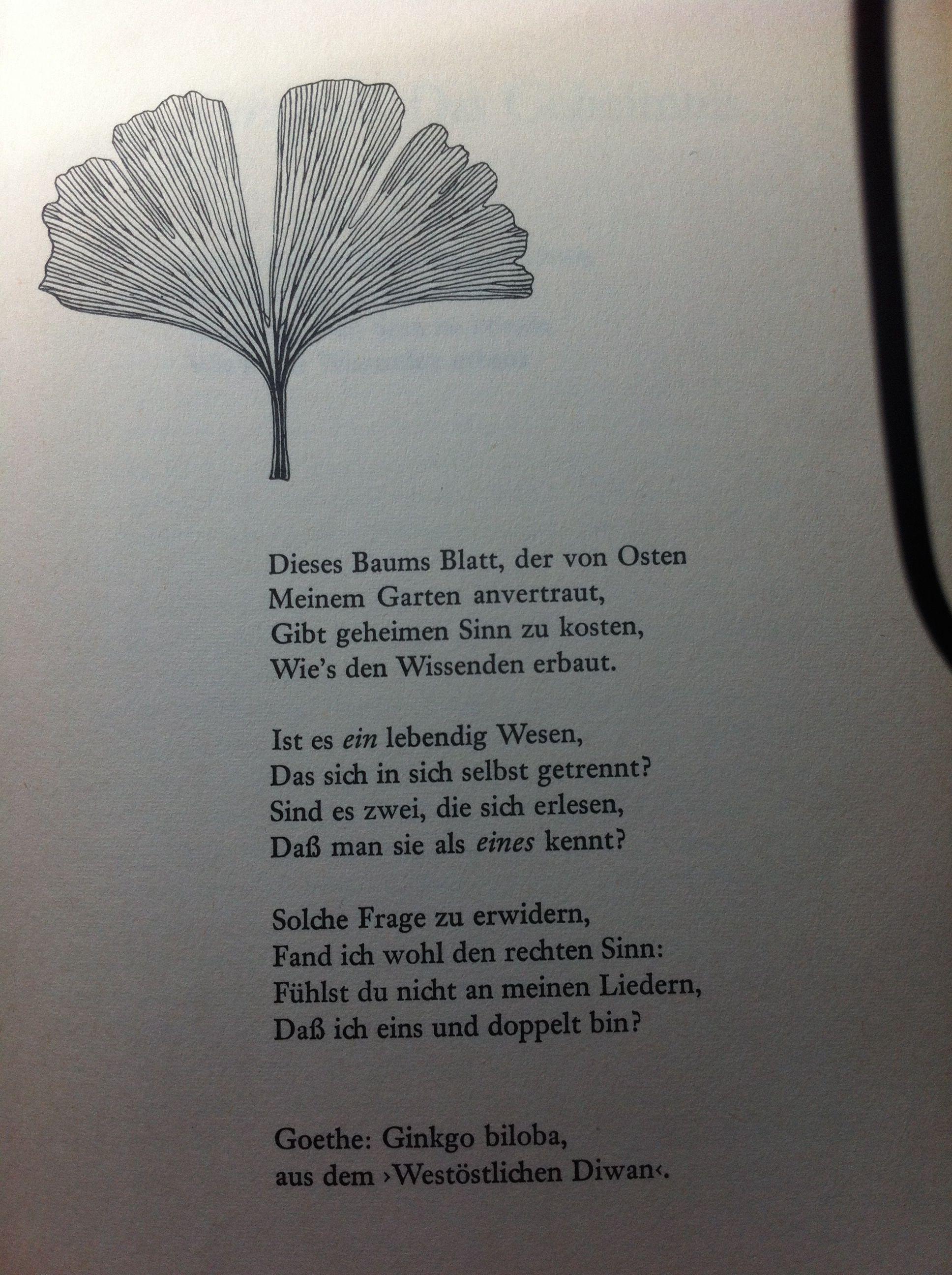 One Of My Favorite Poems Ginkgo Biloba Goethe In 2019
