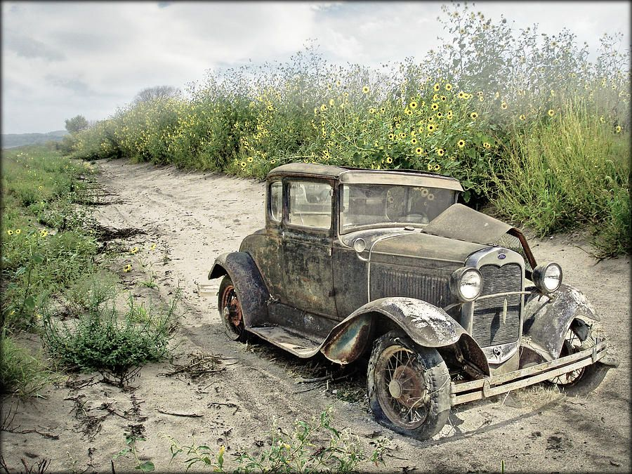 End Of The Road by John Anderson Abandoned cars