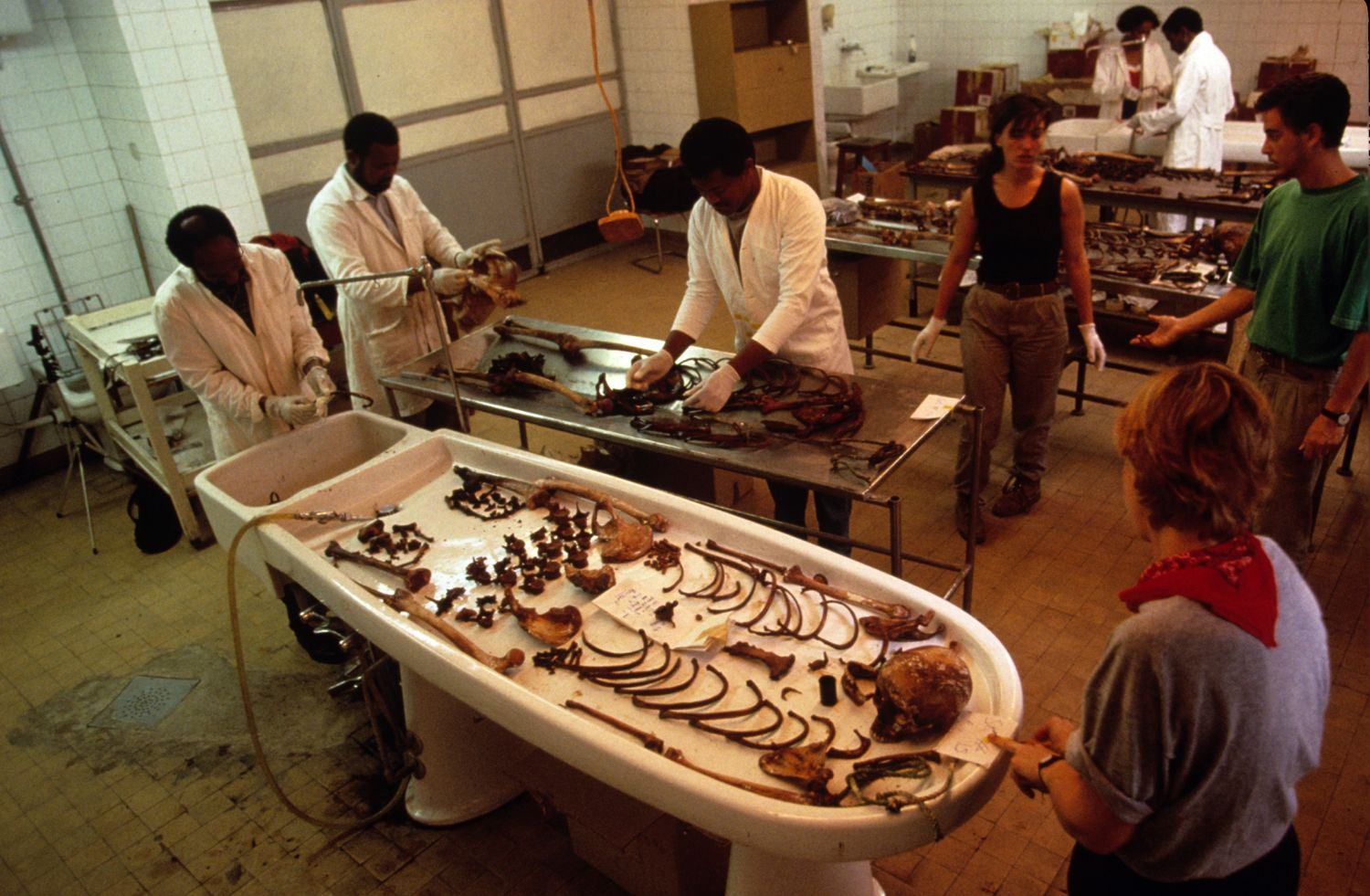 Forensic anthropology jobs needed another government