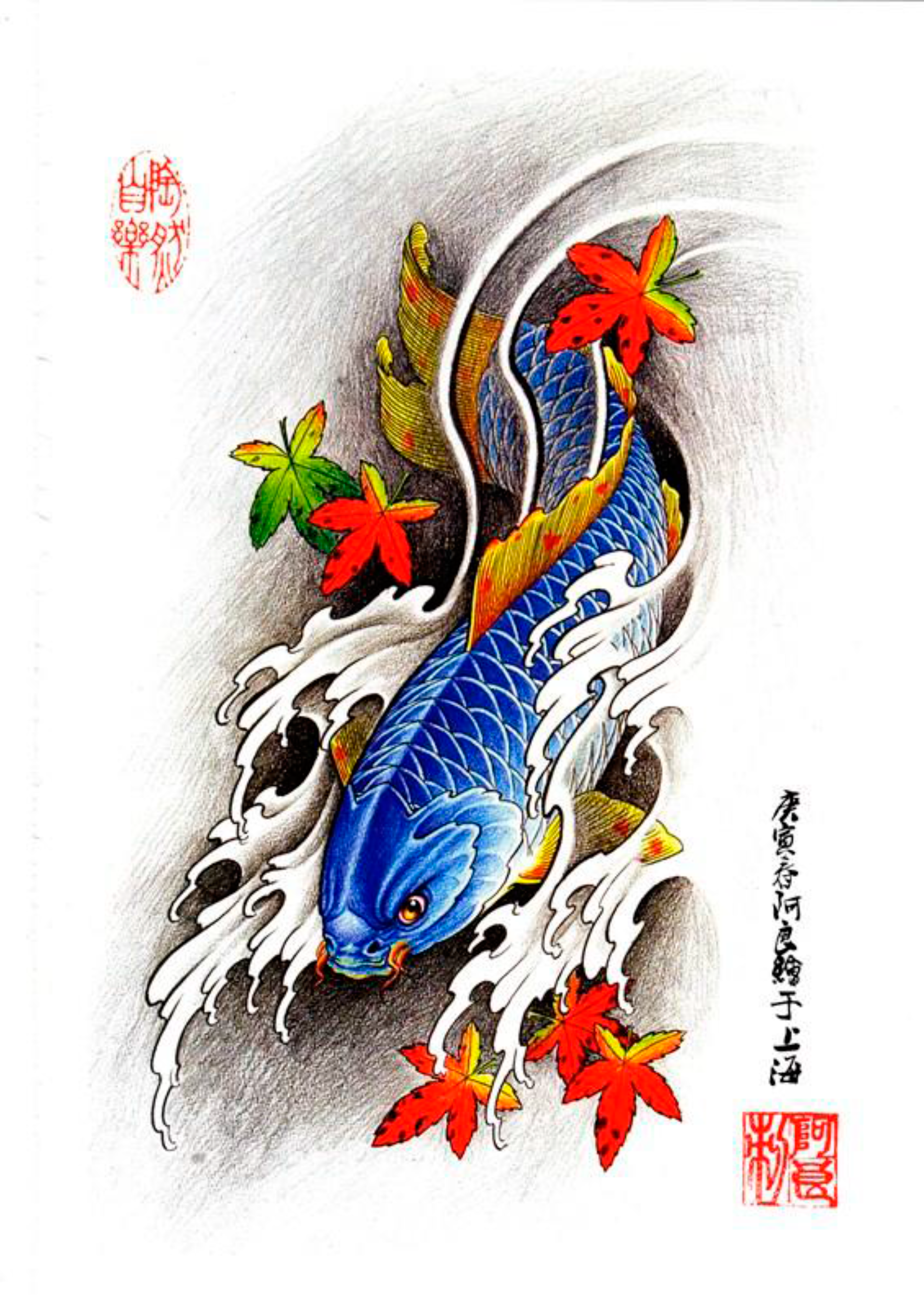 Pin by tattoo reference on kio fish desenhos para for Japan tattoo koi