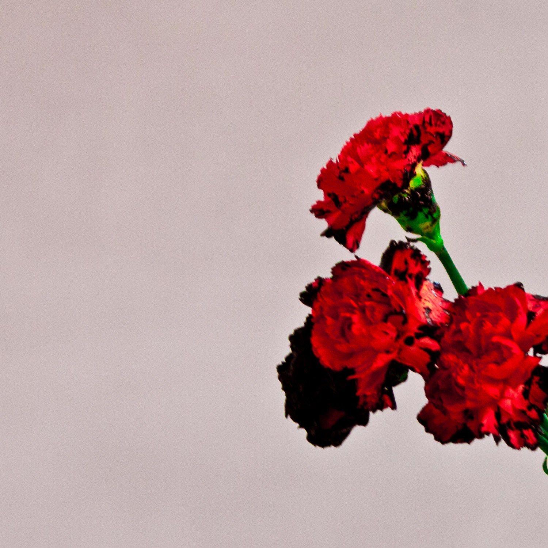 John Legend, Future Album, Future Love