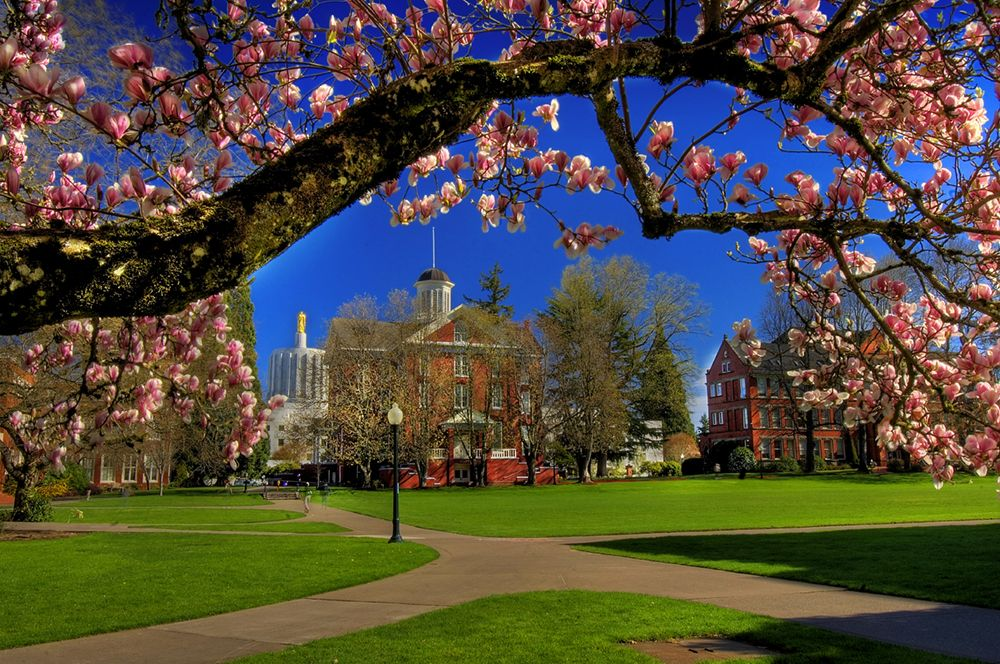 State Capitol Building, Waller Hall, and Easton Hall on Willamette's Campus During Spring